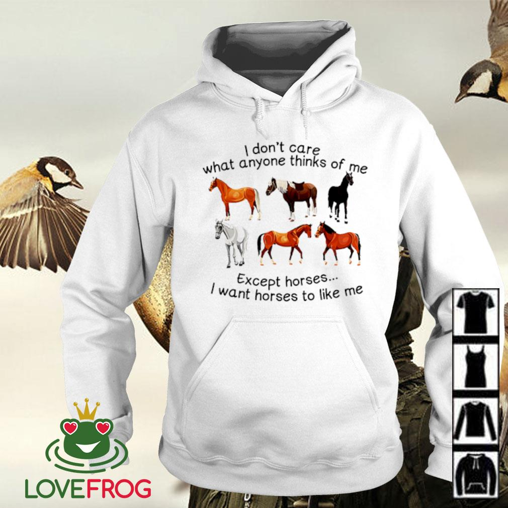 I don't care what anyone thinks of me except horses I want horses to like me s Hoodie